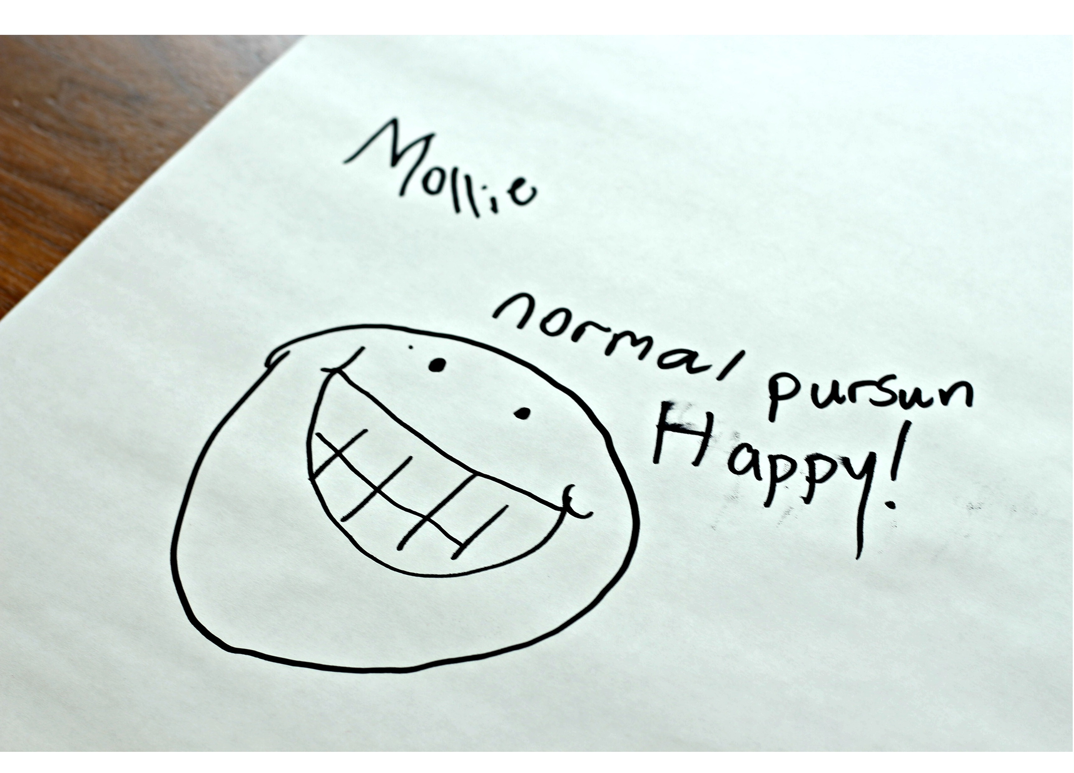 "A drawing of a smiley text with text that reads ""Mollie - normal pursun - Happy!"""